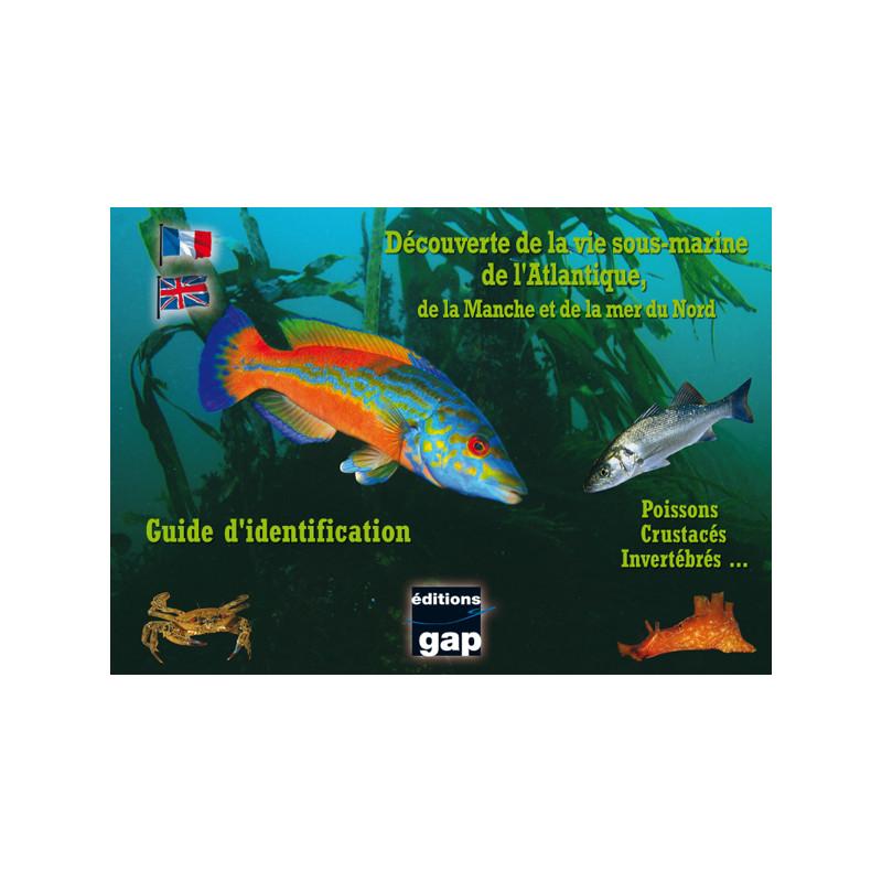 Guide d'identification Atlantique, la Manche et la mer du Nord