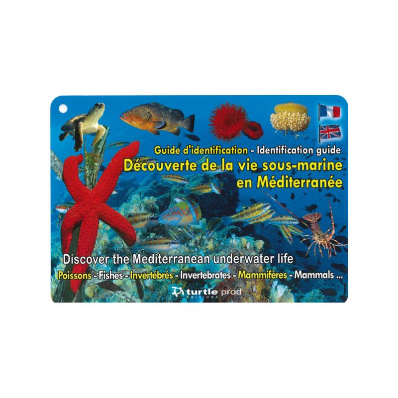 Guide d'identification Méditerranée