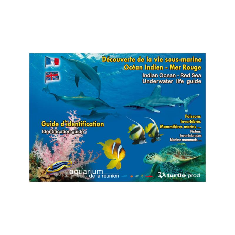 Guide d'identification Océan Indien et Mer Rouge